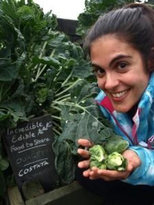 Verduras al alcance de la mano en las calles de Todmorden.