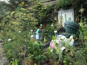 Junto a la estación de tren o al lado del ambulatorio, los huerto-jardín aparecen por toda la ciudad.