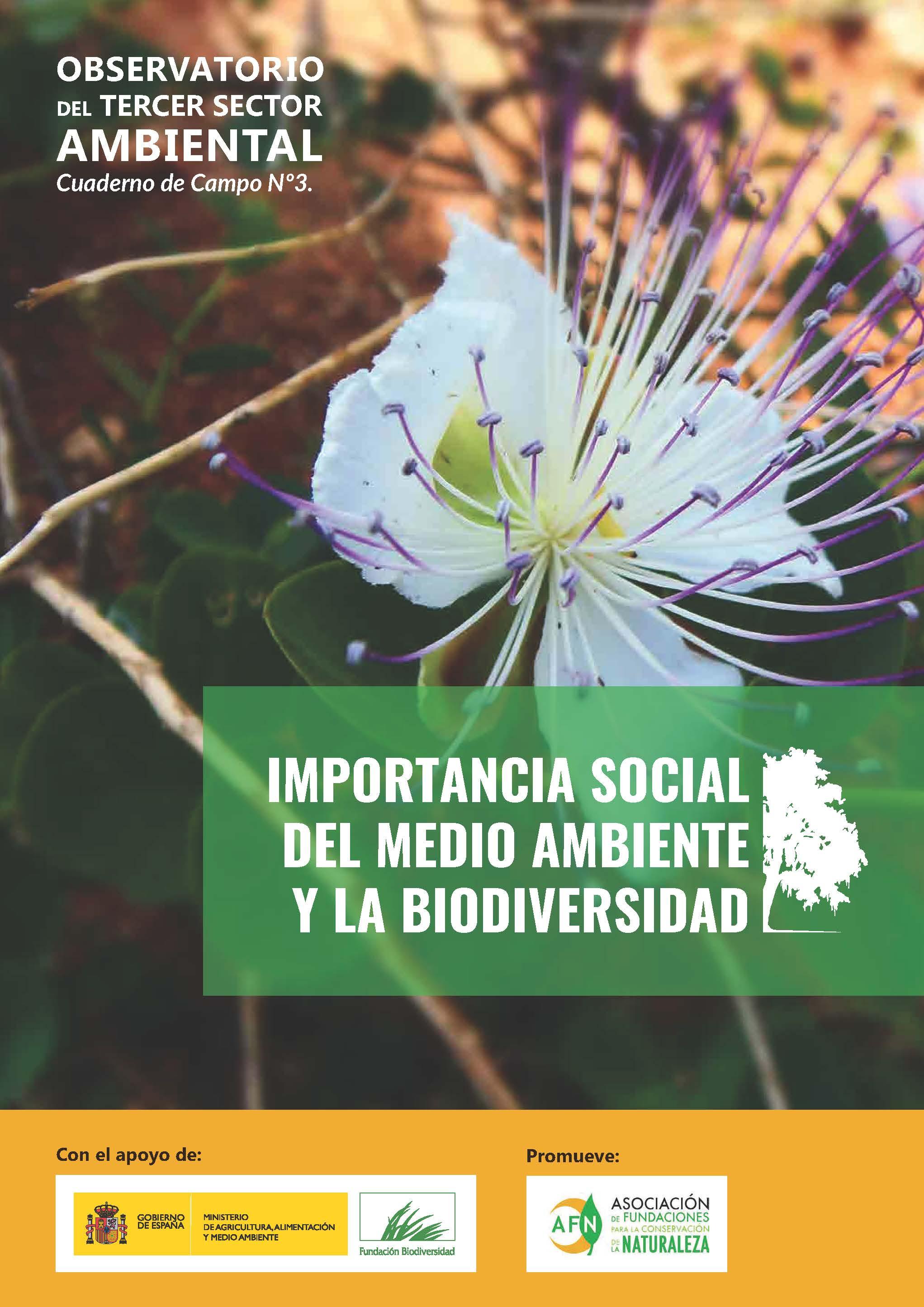 3_Informe_TercerSector_ImportanciaSocial