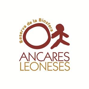 Dibujando el camino hacia el futuro de la Reserva de la Biosfera de los Ancares Leoneses. Plan Estratégico 2020-2030